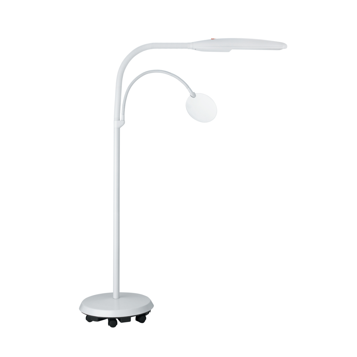 Daylight Swan Floor Lamp
